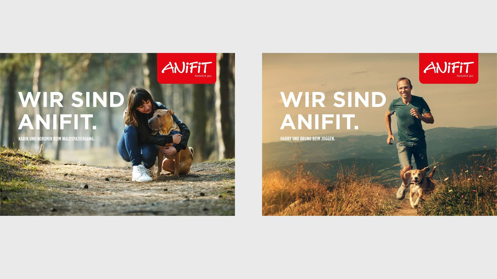 AniFit - Strategie